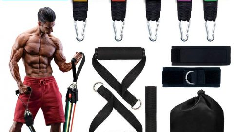 Resistance Bands Set (11pcs)(Up to 155 Lbs)