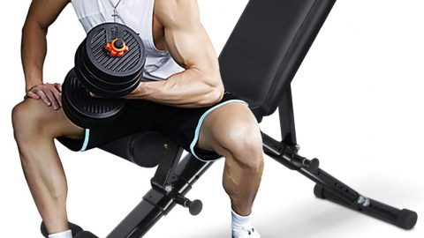 Training Bench for Full Body Workout