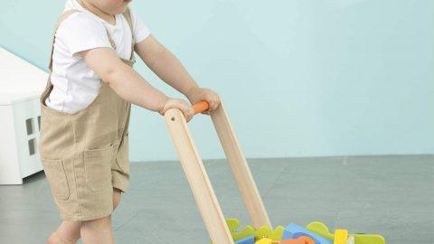 labebe Baby Learning Walker